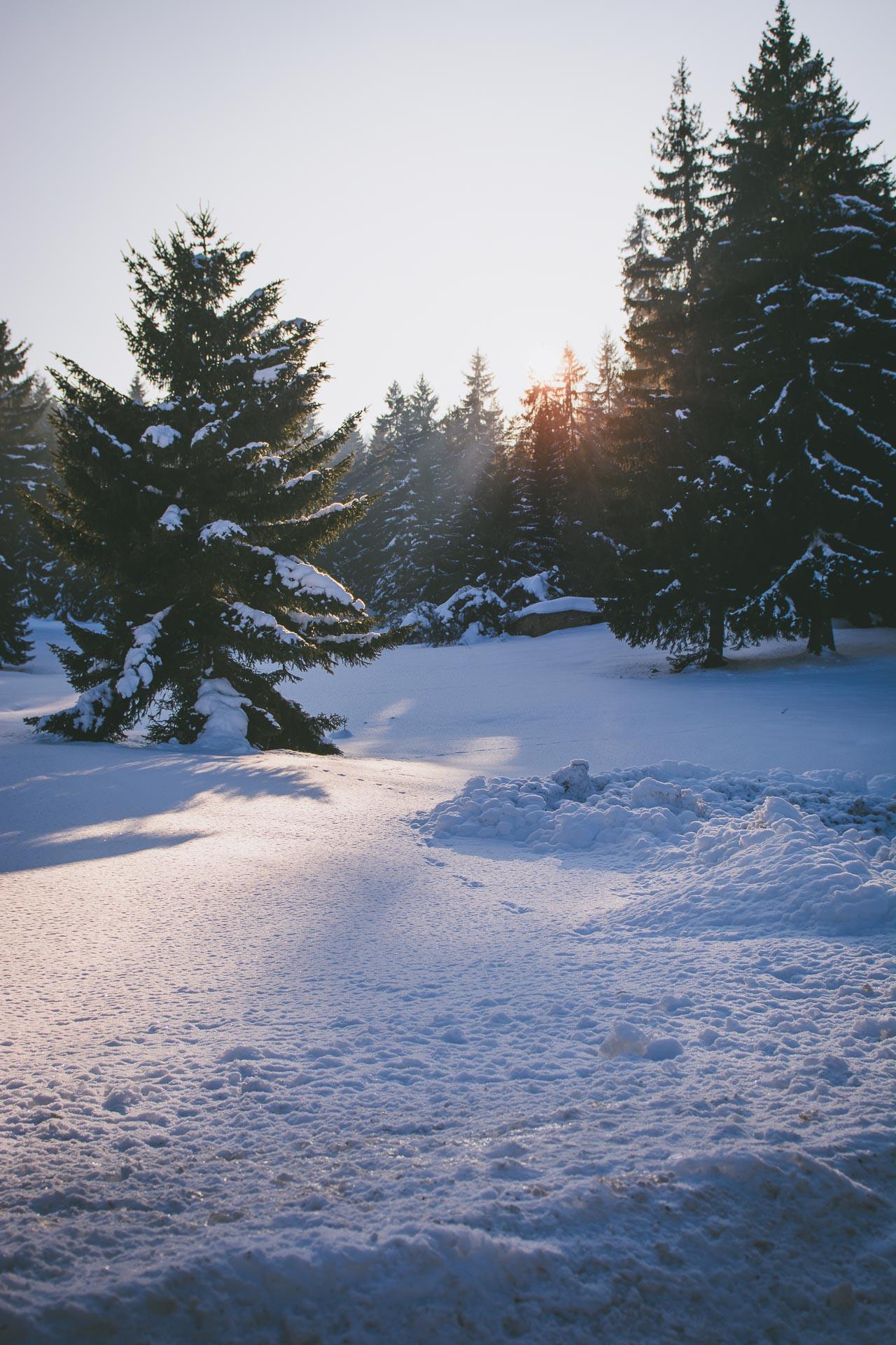 Borovets sunset snow landscape