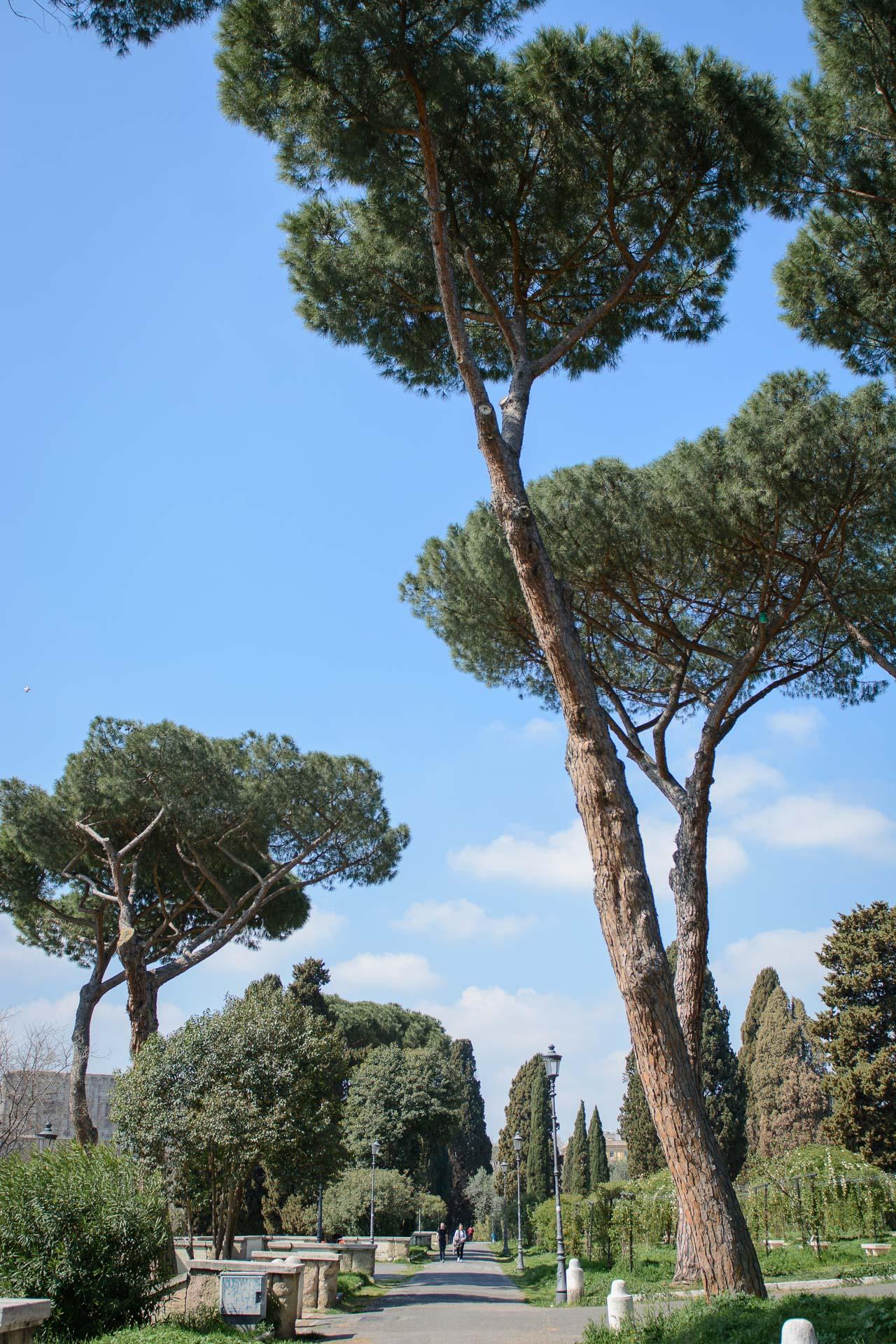 Rome travel guide blogger 20