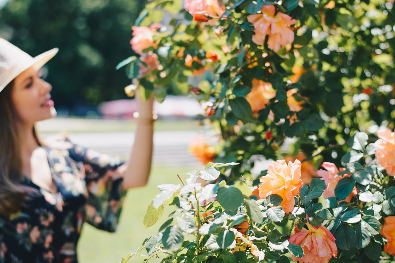20170529 Bulgarian roses summer