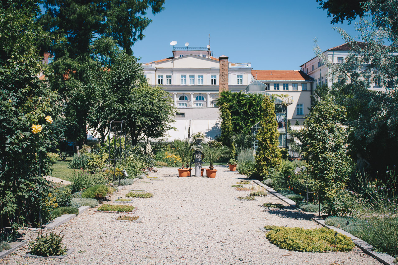 Botanic city garden of Sofia