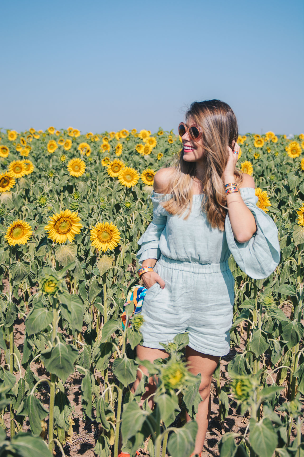 Freywille blogger sunflowers