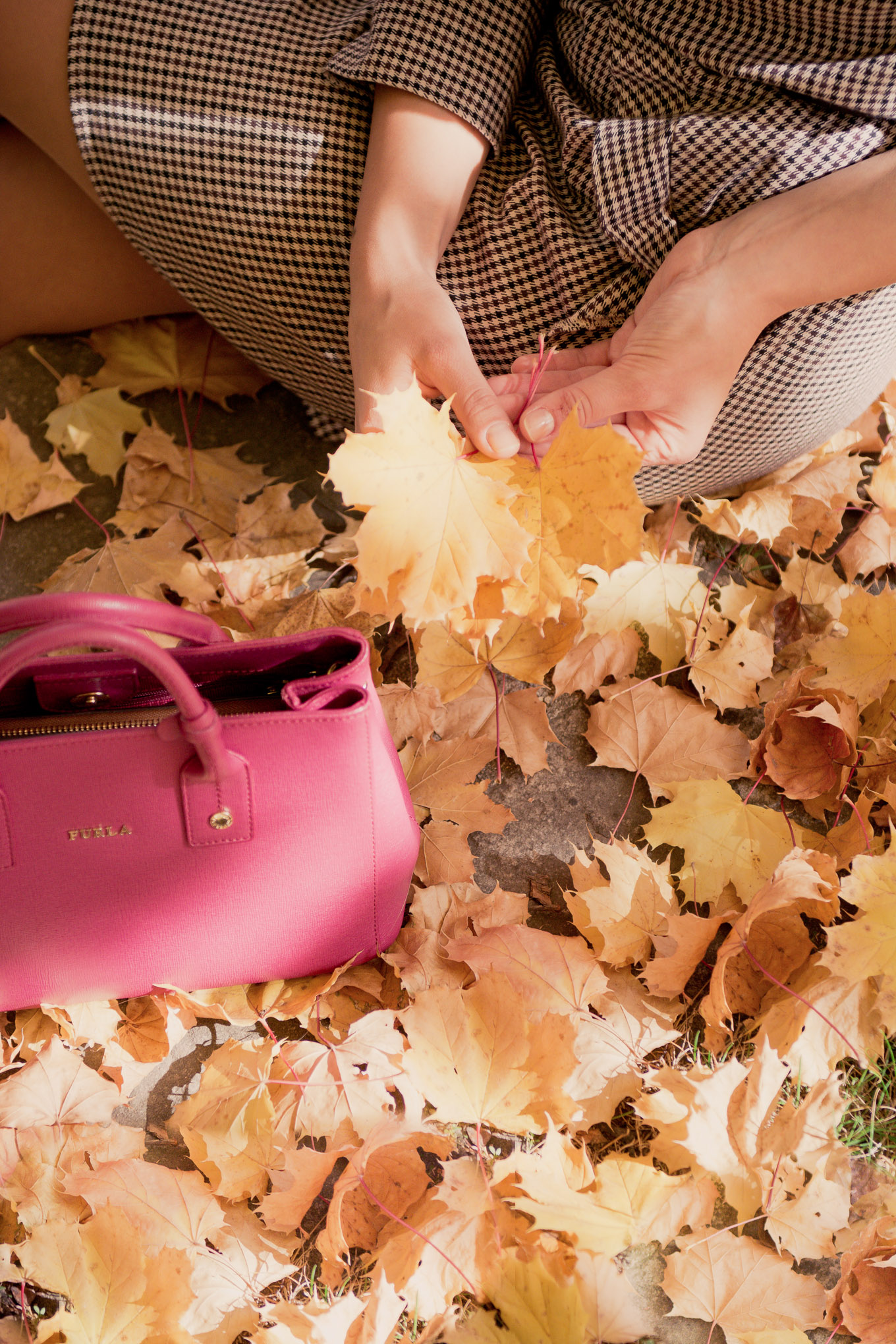 Fall colors furla handbag