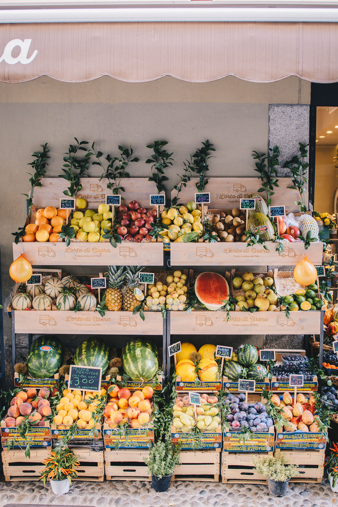 Milan produce market