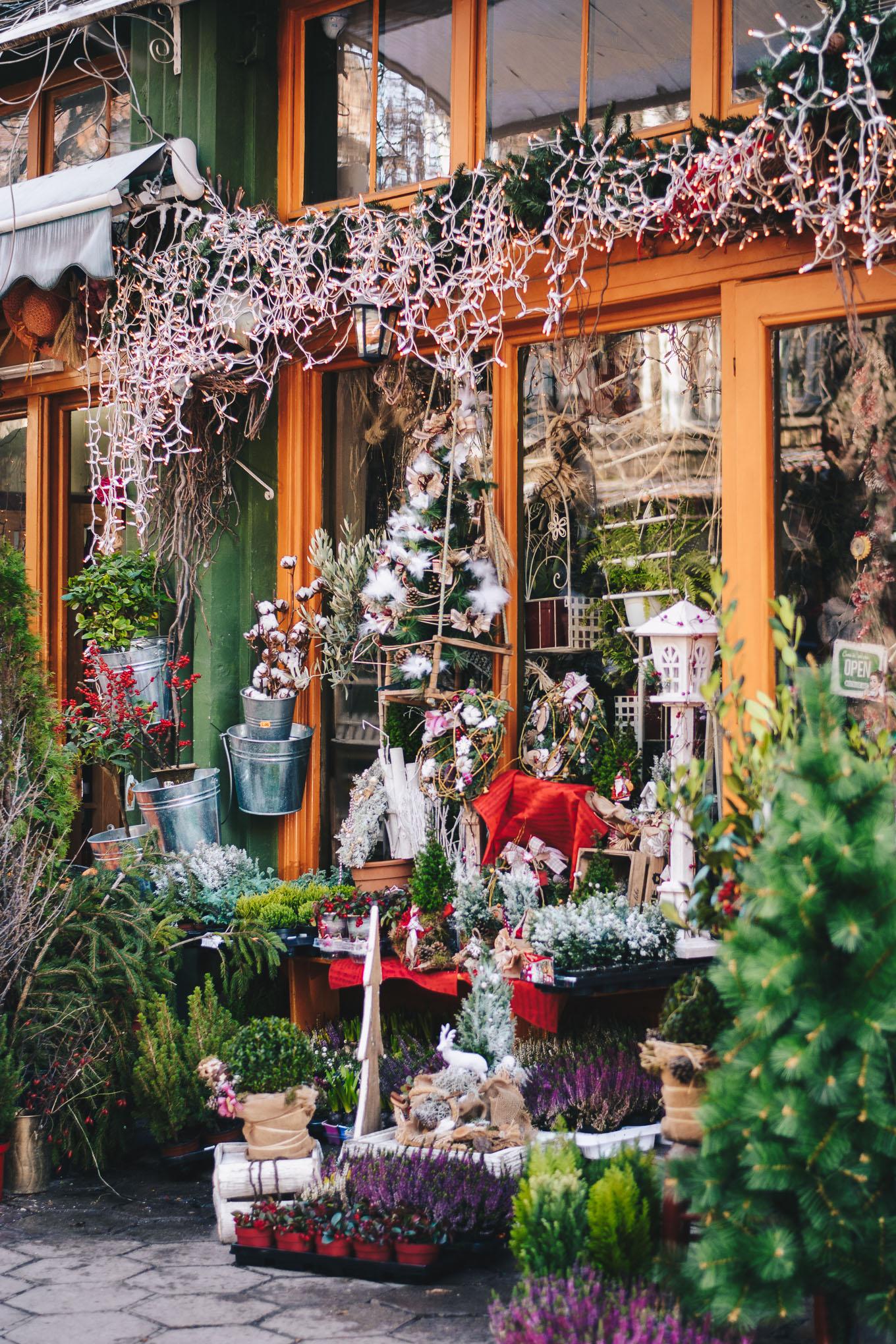 local flower shop sofia
