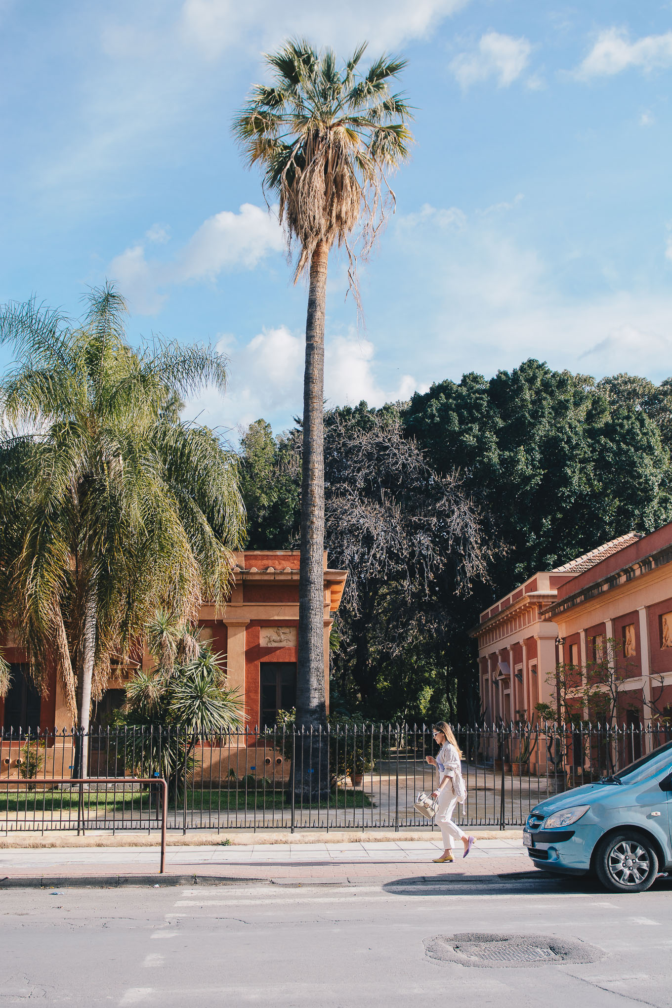 Botanical garden of palermo