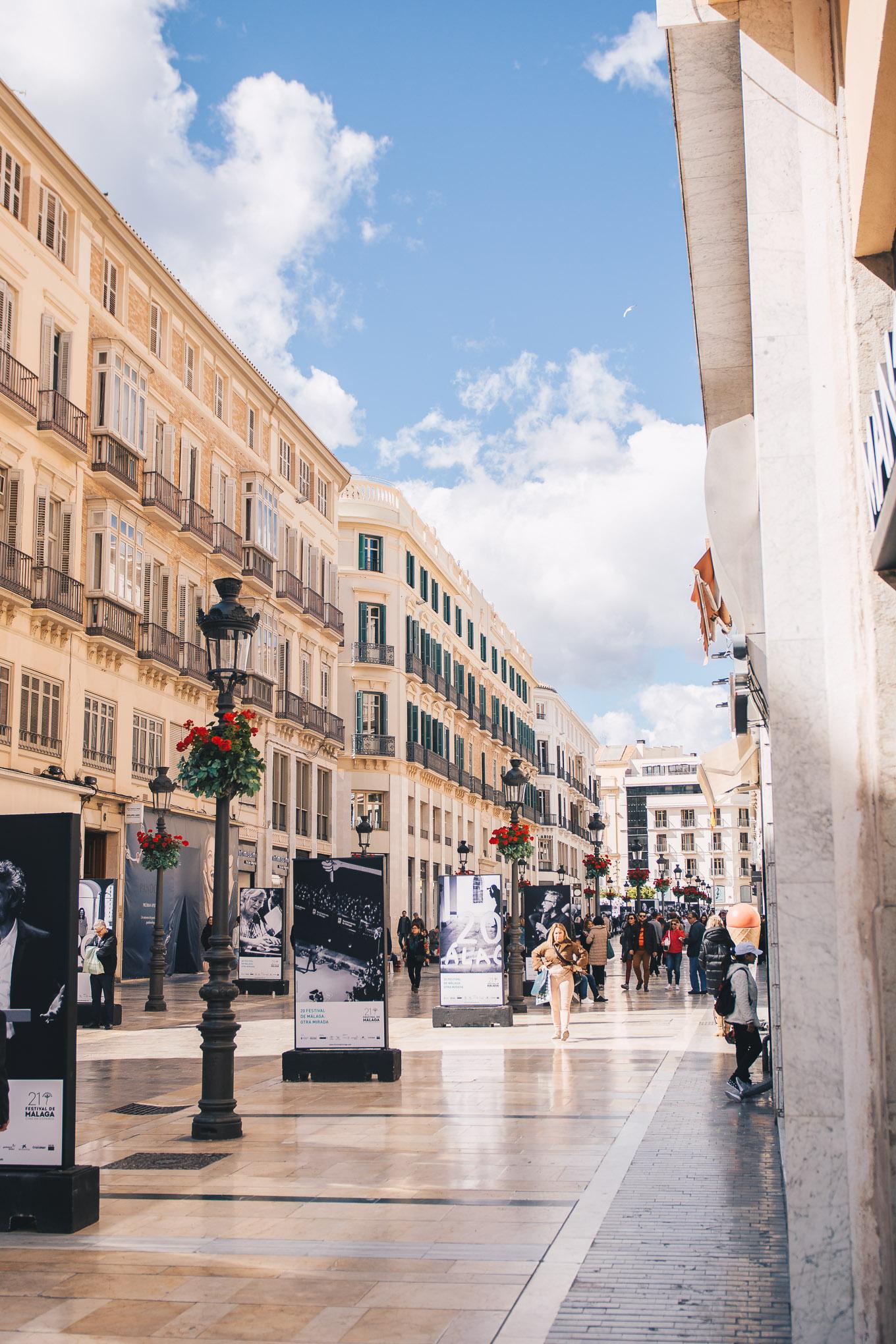 Malaga shopping street