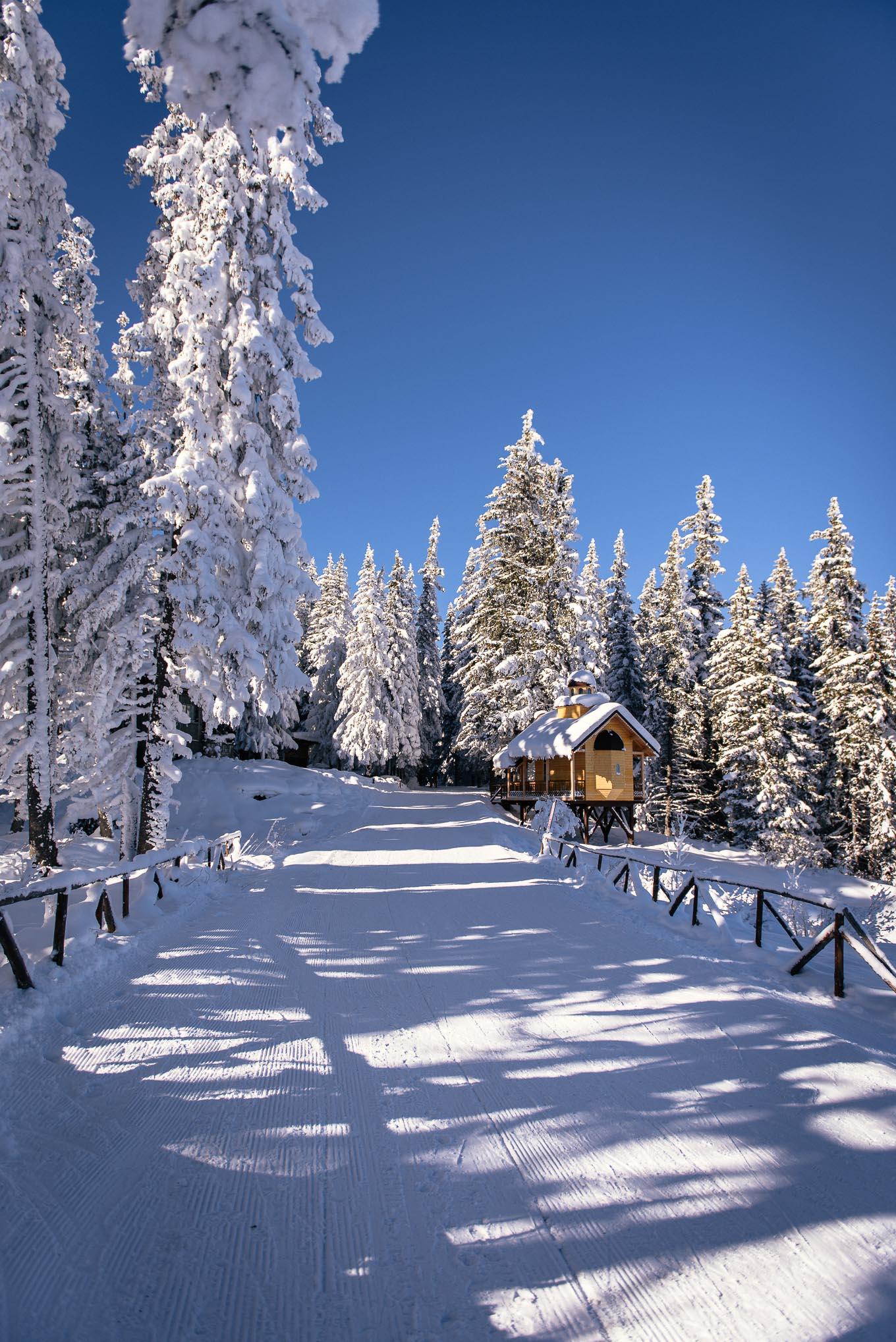 Витоша ски писта Алеко
